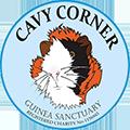 Cavy Corner
